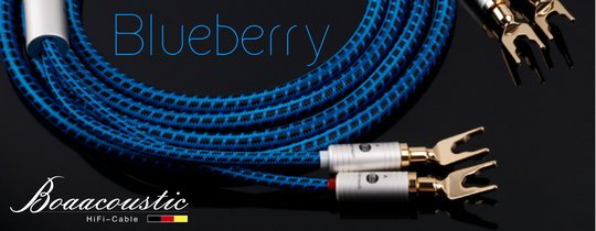 Blueberry_BB-008
